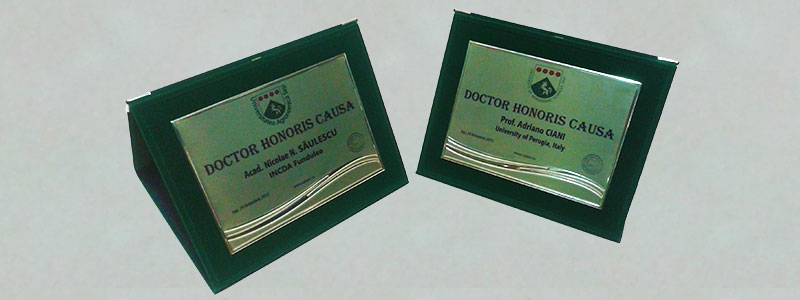 Plachete metalice personalizate în policromie